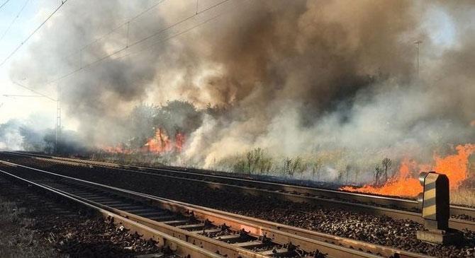 Harminc kilóméteren pusztított a tűz megyénkben
