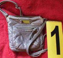 Lábatlani táskatolvajt kaptak el a rendőrök